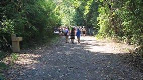 Menigten van toeristen in Nationaal Park Manuel Antonio stock video