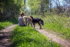 A menina é com dois cães Fotografia de Stock Royalty Free