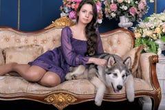 Menina adolescente e malamute do cão no sofá Fotos de Stock Royalty Free