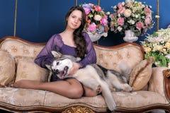 Menina adolescente e malamute do cão no sofá Fotografia de Stock