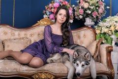 Menina adolescente e malamute do cão no sofá Imagens de Stock