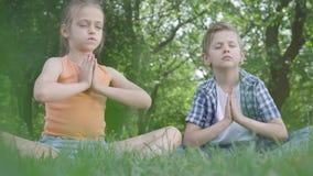 Menina adorável bonita do retrato e o menino considerável que senta-se em meditar da grama As crianças estão na ioga E filme