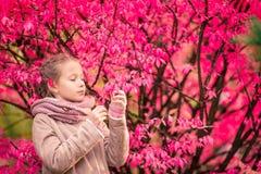 Menina adorável no dia bonito do outono fora fotografia de stock royalty free