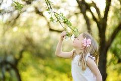 Menina adorável no jardim de florescência da árvore de maçã no dia de mola bonito fotos de stock royalty free