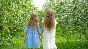 Menina adorável no jardim de florescência da maçã no dia de mola bonito vídeos de arquivo