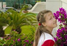Menina adorável pequena que cheira flores coloridas no dia de verão imagem de stock