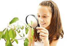 Menina adorável que olha uma planta através de uma lupa fotografia de stock