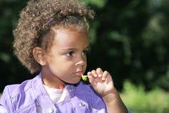 menina africana bonito que cheira uma flor Imagem de Stock