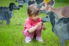 A menina alimenta carneiros de madeira Imagem de Stock Royalty Free