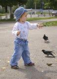A menina alimenta pombos Fotografia de Stock