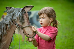 A menina alimenta um cavalo de madeira Imagem de Stock