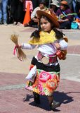 Menina andina 5 Fotos de Stock