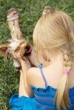 A menina 6 anos velha de volta à câmera joga com yorkshire terrier Fotos de Stock