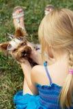 A menina 5 anos velha de volta à câmera joga com yorkshire terrier Fotografia de Stock Royalty Free