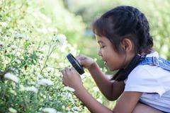 Menina asiática bonito da criança que olha a flor bonita com para ampliar fotos de stock royalty free