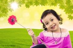 A menina bonito traz a flor vermelha da margarida do gerbera Imagem de Stock
