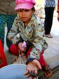 Menina asiática com aranha Fotos de Stock Royalty Free