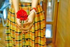 A menina asiática está guardando a flor vermelha do cravo imagem de stock royalty free