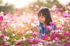 Menina asiática pequena em campos de flor foto de stock