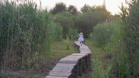 Menina ativa alegre nas corridas brancas do vestido ao longo do ar livre da ponte de madeira entre juncos altos verdes video estoque