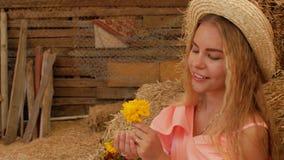 A menina atrativa nova em um chapéu de palha no fundo do feno aspira uma flor amarela, a seguir funde as pétalas da palma 4K 4K video estoque