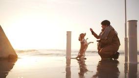 Menina atrativa que joga com o deus esperto no nascer do sol perto do movimento lento do seacost vídeos de arquivo