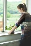 A menina atrativa toma de uma planta no potenciômetro Fotos de Stock Royalty Free