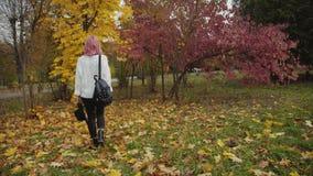 A menina bonita anda no parque colorido do outono, põe sobre o chapéu e os olhares de lado vídeos de arquivo