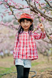 Menina bonita chinesa Fotos de Stock Royalty Free