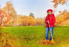 A menina bonita com ancinho limpa a grama das folhas Foto de Stock Royalty Free