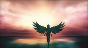 Menina bonita com asas do anjo que anda no litoral no por do sol ilustração do vetor