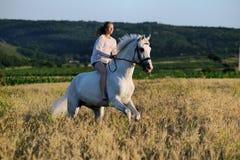 Menina bonita com o cavalo branco no campo Fotos de Stock Royalty Free