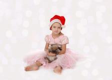 Menina bonita com um coelho foto de stock royalty free