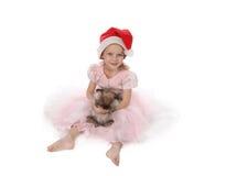 Menina bonita com um coelho imagem de stock royalty free