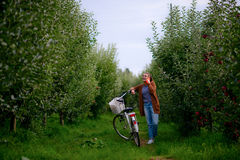 Menina bonita com uma bicicleta em um pomar de maçã Imagem de Stock Royalty Free
