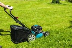 A menina bonita corta o gramado, gramados de sega, cortador de grama na grama verde, equipamento da grama da segadeira, segando a Foto de Stock Royalty Free