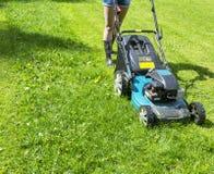A menina bonita corta o gramado Gramados de sega Segadeira de gramado na grama verde Equipamento da grama da segadeira Ferramenta Imagens de Stock Royalty Free