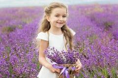 Menina bonita da criança no campo da alfazema com a cesta de fotografia de stock royalty free