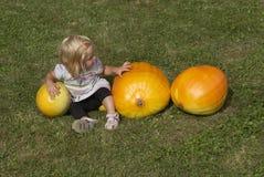 Menina bonita da criança que tem o divertimento com cultivo no remendo orgânico da abóbora Imagens de Stock Royalty Free