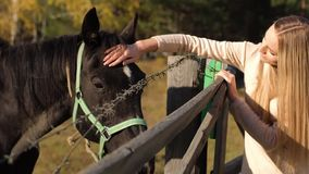 Menina bonita de sorriso com cavalo video estoque