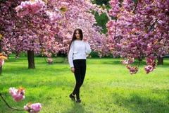 Menina bonita do estudante Fotografia de Stock Royalty Free