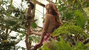 Menina bonita do gengibre para observar para a serpente no jardim tropical Mulher caucasiano atrativa com vestir vermelho ondulad filme