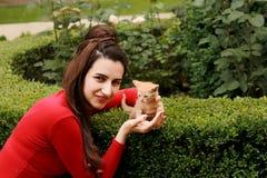Menina bonita e gatinho amarelo fotos de stock royalty free