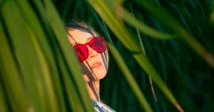 Menina bonita entre as folhas da árvore exótica em um por do sol fotos de stock
