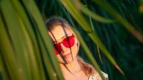Menina bonita entre as folhas da árvore exótica em um por do sol fotografia de stock royalty free
