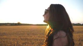 A menina bonita está andando ao longo do campo de trigo com o alargamento do sol no fundo Perfil da jovem mulher que vai no prado video estoque