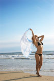 A menina bonita está sensual em uma praia Fotos de Stock Royalty Free