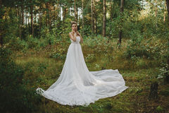 Menina bonita feericamente da floresta no branco Fotos de Stock Royalty Free