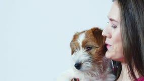 A menina bonita feliz em um t-shirt cor-de-rosa abraça um cachorrinho Jack Russell Terrier, olha na câmera, fundo cinzento, fim vídeos de arquivo