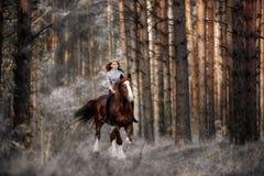 Menina bonita galope de montada de um cavalo na floresta misteriosa no amanhecer foto de stock